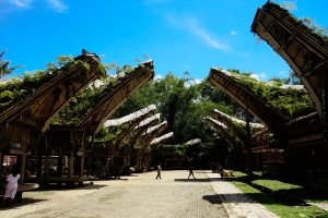 6 - other view on tana toraja house