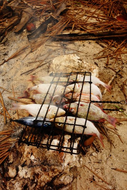27 - notre grillage sur notre ile de robinson