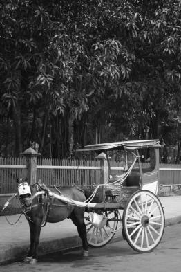 caleche pres du parc rizal/ Coach near Rizal Park