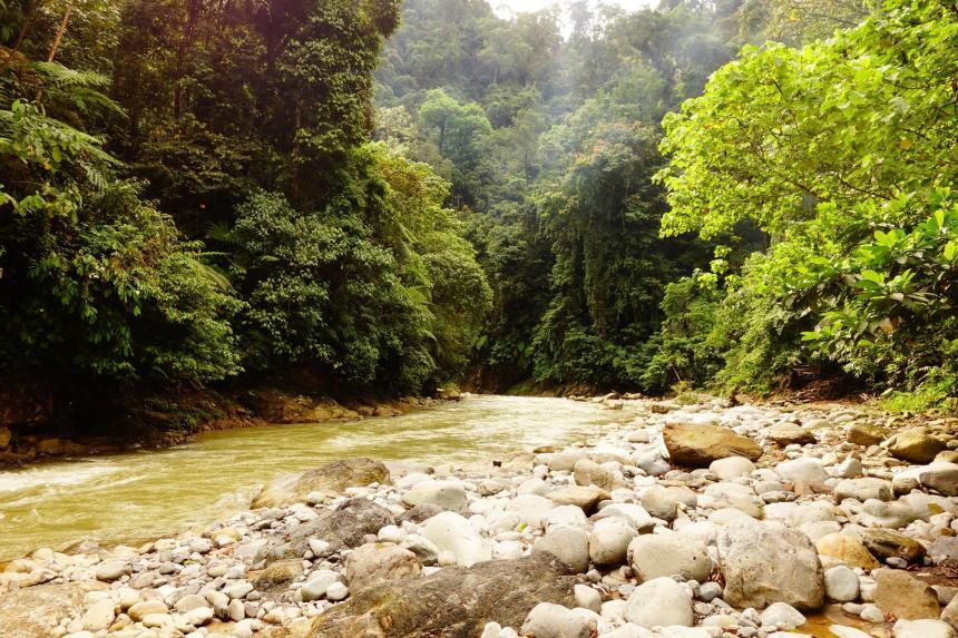 la riviere Bohorok où se trouve notre 2nd campement