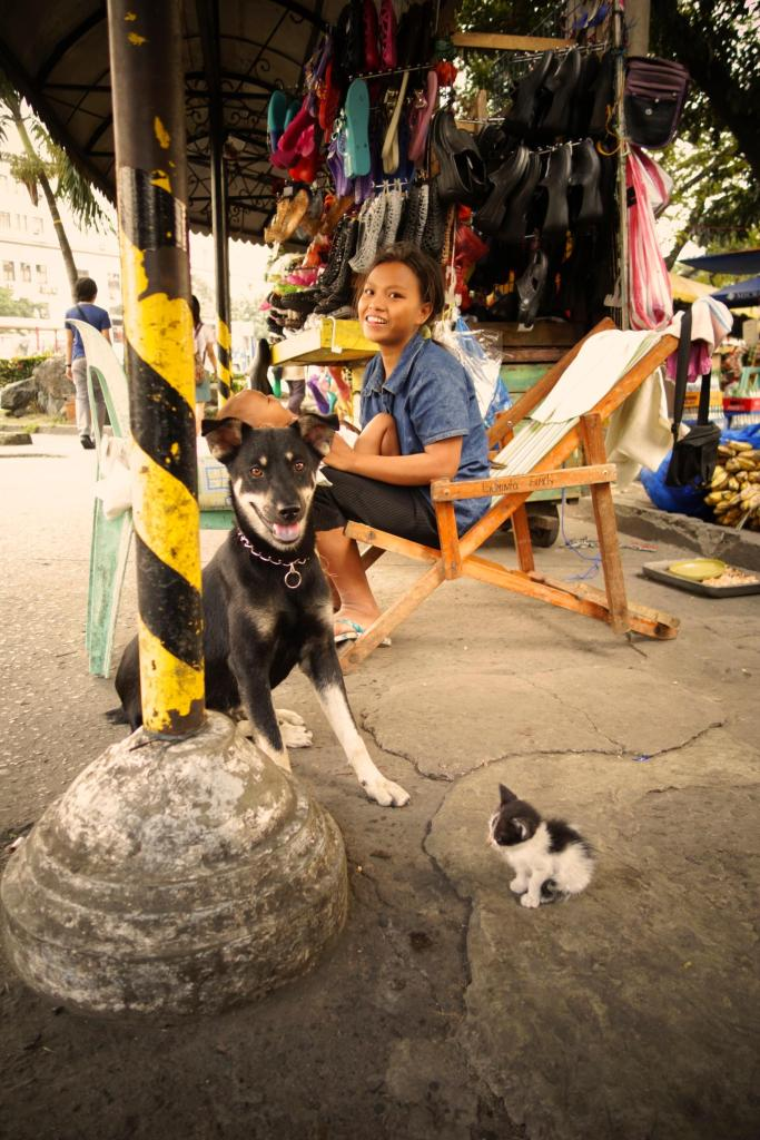 6-chien, chat, femme et bebe
