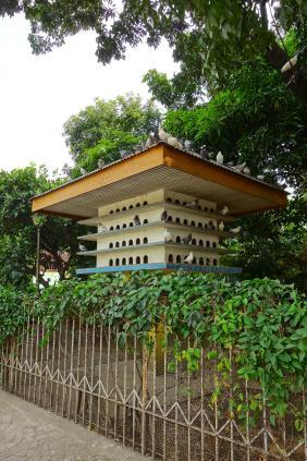 la maison des pigeons... / pigeons house