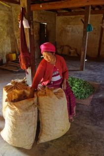 Old woman sorting her ginger bag (behind is tea)