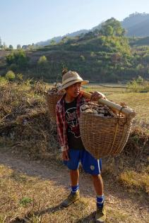 oung man carrying his ginger baskets