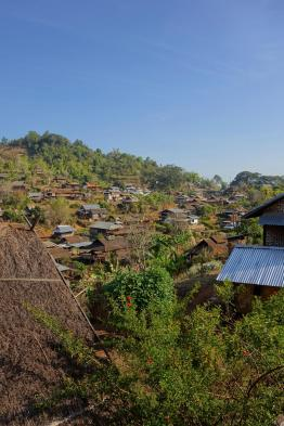 View of the Pankam village