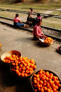 At the train station, mandarines load
