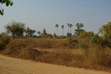 The central plain
