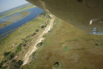 Where the pilot hunts for wildlife