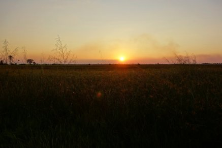 2nd sunset in the delta