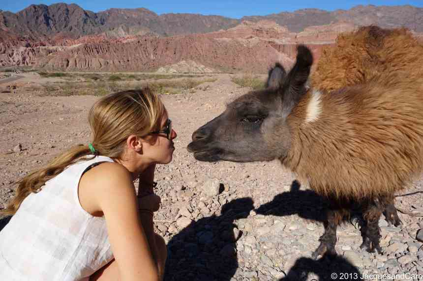Caroline kissing the lama