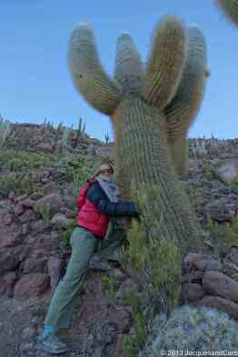 Caroline fell in love in a cactus