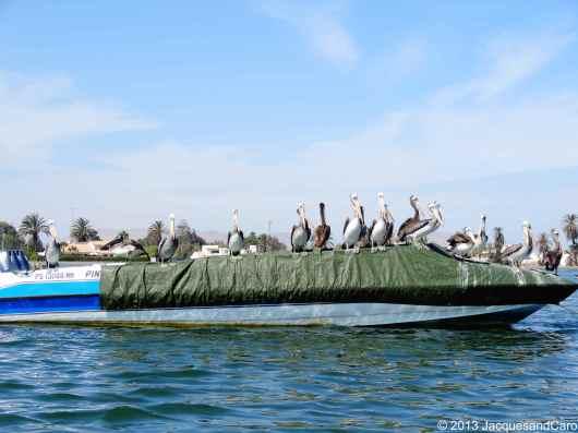 My boat is full...