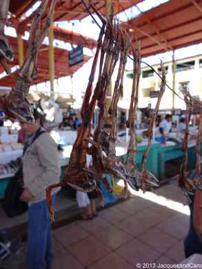 "Some strange animal ""dry"" hanging for sale at Arequipa market"