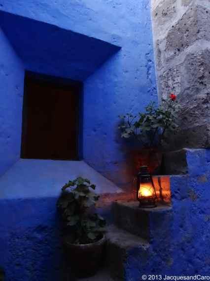 Geranium, steps and light