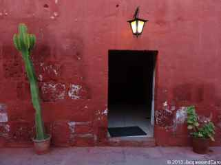 Open door with cactus and geranium