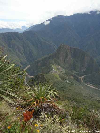 Machupicchu site and Huyana Pichu surrounded by impressive mountains and flora