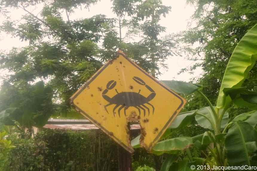 As you can see, be aware, dangerous crabs crossing the road...