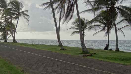 North part of Big Corn… I love the grass and coconut tree..