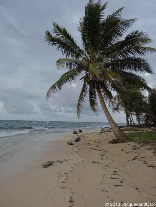 North east beaches of Big Corn: Sally Peaches...