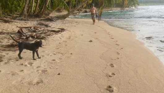 Along Manzanillo beach