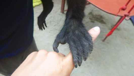 My hand, your hand