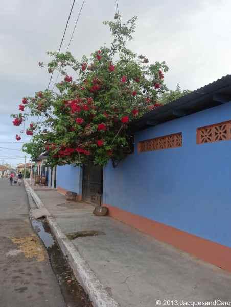 Granada colourful street