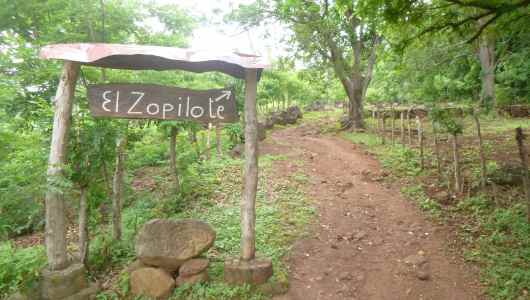 Welcome to El Zopilote