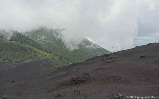 The vegetation is coming back after May 2010 eruption.