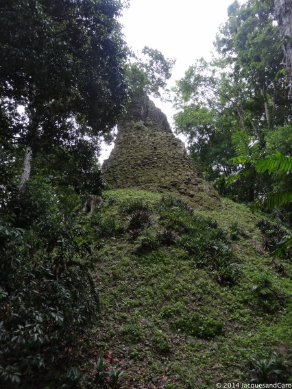 Tikal under the jungle