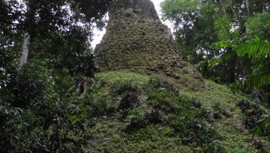 Tikal under the jungle