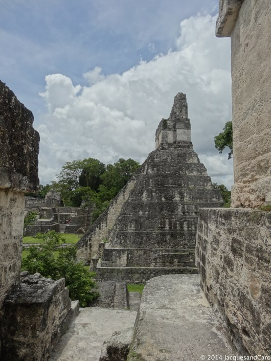 Hard to believe that Tikal was built by the Mayan between 800BC to 900AD.