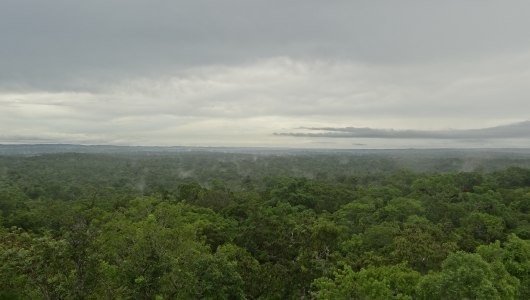 On top of Temple IV, an amazing view